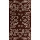 32206  Brown Paisley